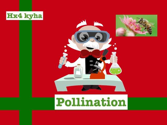 Pollination by hx4 kyha