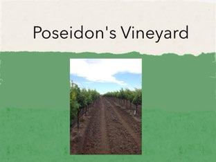 Poseidon Vineyard by Nicholas Underwood
