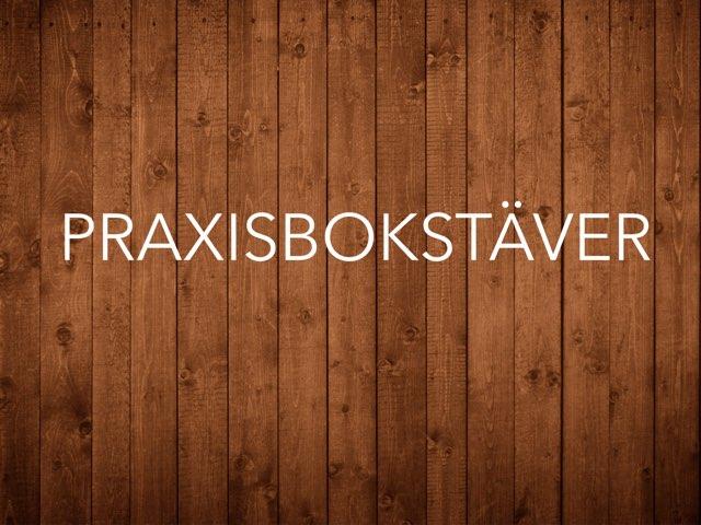 Praxis by Helen Lindmark