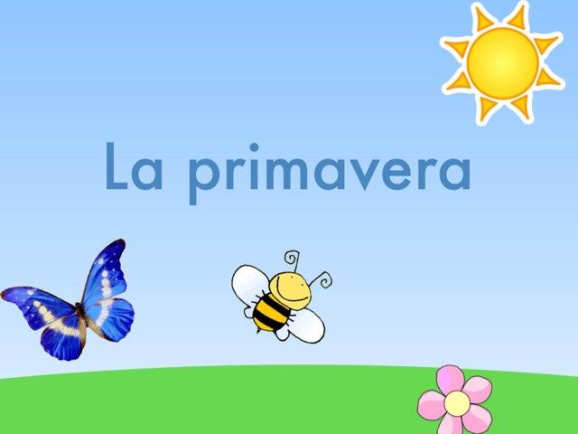 Primavera by Marta Gómez Barragan