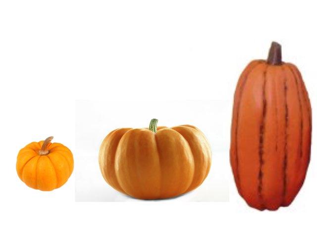 Pumpkin Descriptive Words by Julie Kestler