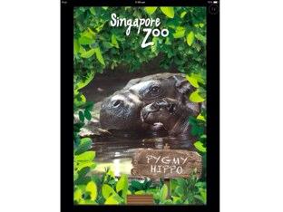Puzzle Hippo 2 by Oscar Lim