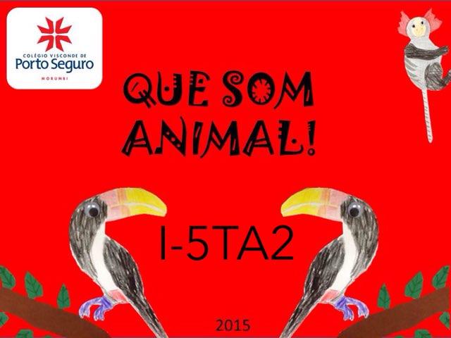 QUE SOM ANIMAL - I-5TA2 - 2015 by MF Balugani