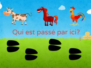 Jeunesse-Qui est passé par ici? by SAAC FSAA Université Laval