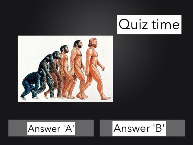 Quiz #1 by Diane Romero