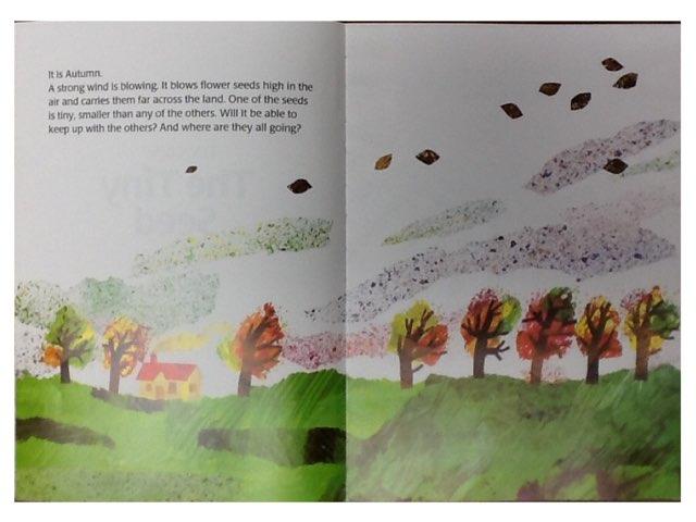 RC Tiny Seed Book Walk by Kelly MacDuff