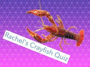 Rachel's Crayfish Quiz  by Debra  Joyce