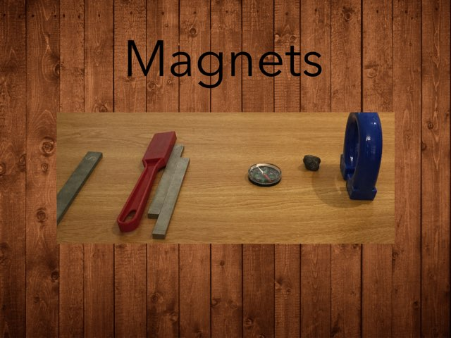 Raina's Magnet Game by Frances Chapin