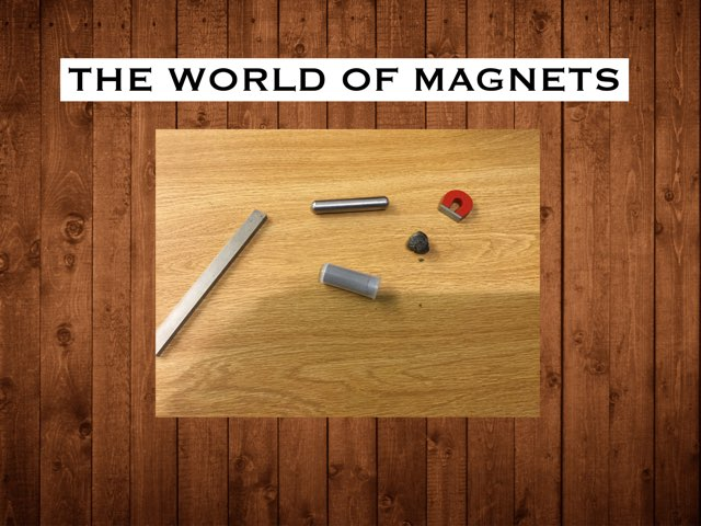 Rayce's World of Magnets by Frances Chapin