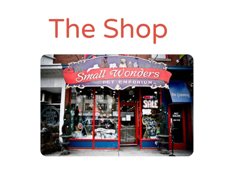 Red Book: The Shop by MaryAnne Roberto