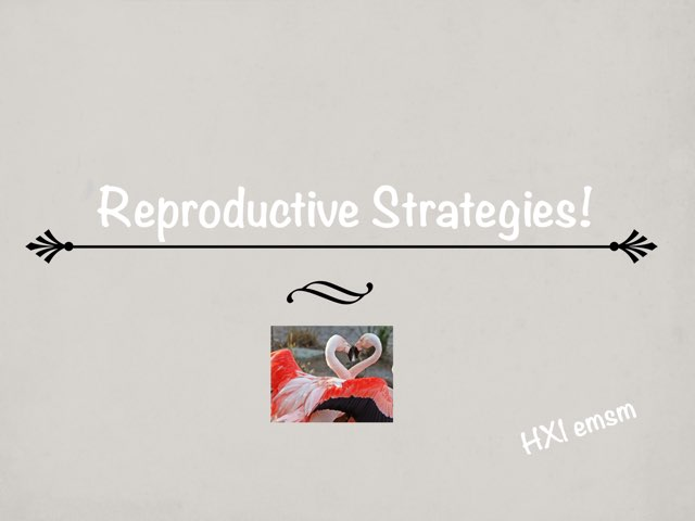 Reproductive  by HX1 emsm