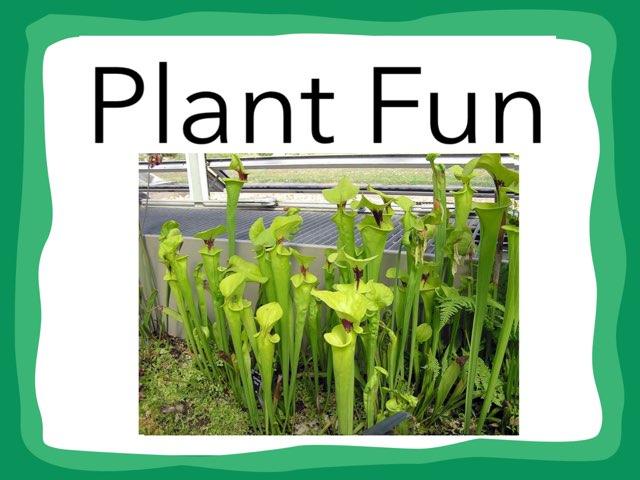 River Plants by Hulstrom 1st Grade