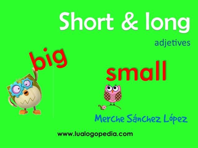 SHORT & LONG  / BIG & SMALL by Mercedes Sanchez