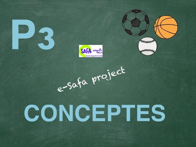 Safap3-conceptes by Meritxell Casanova