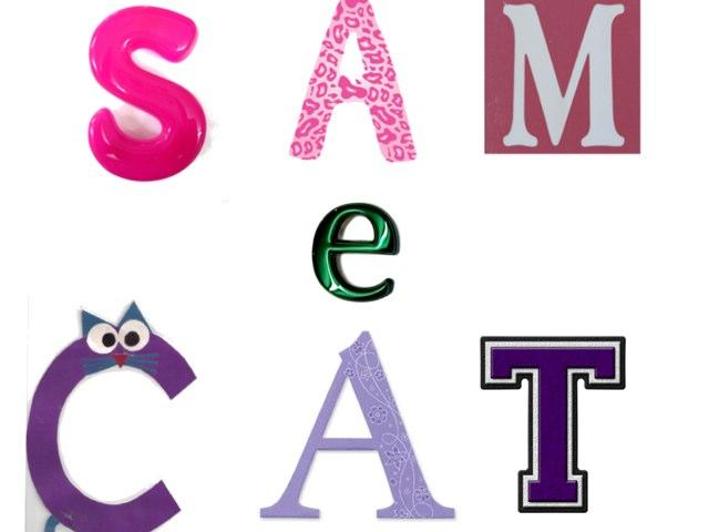 Sam E Cat by Marina Bernardo