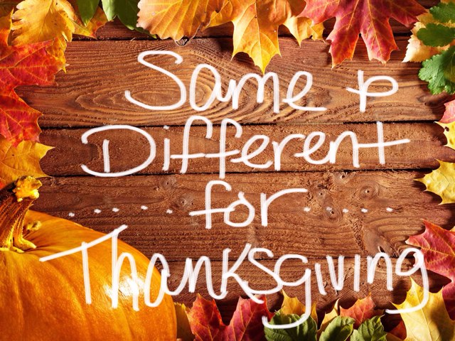 Same/different For Thanksgiving  by Carolyn Mulbach