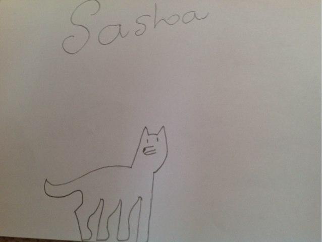Sasha by Evangeline Alexander