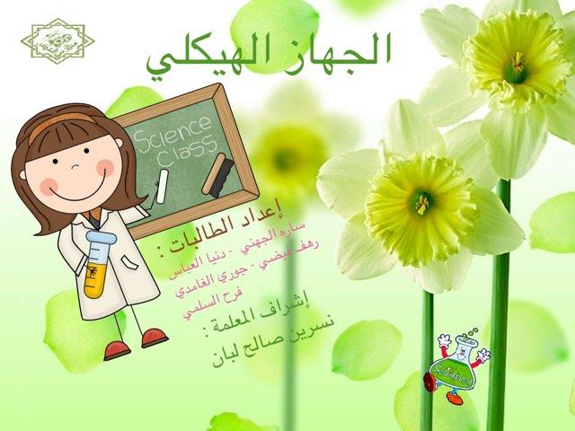 الجهاز الهيكلي  by Nesreen saleh