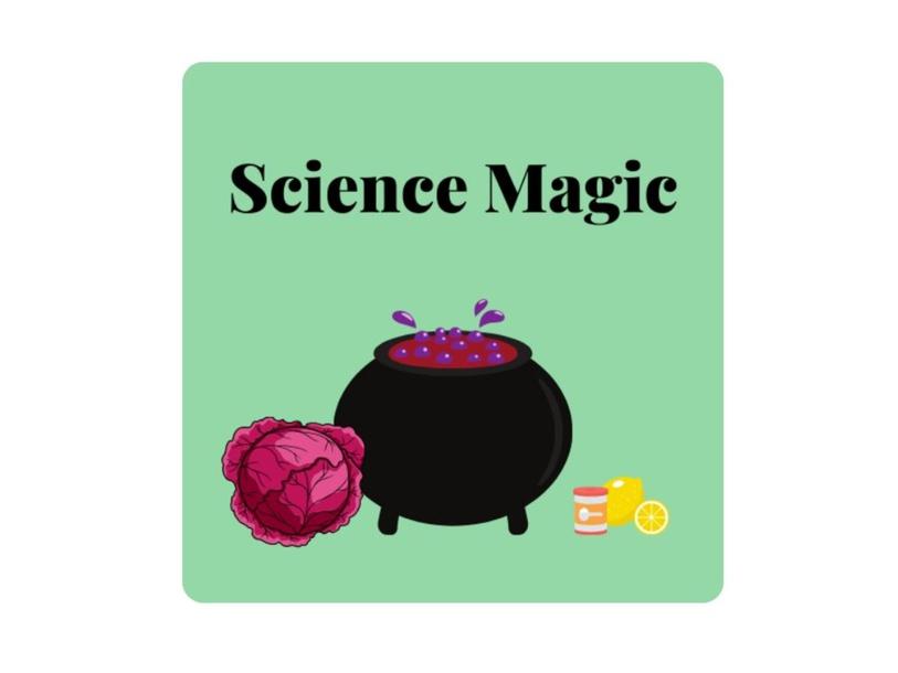 Science Magic by Lauren Hamilton Saez