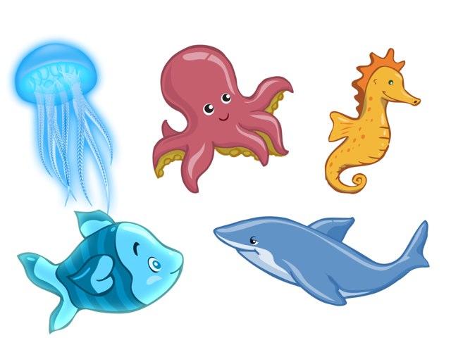 Sea Animals by Jacob Leatherwood