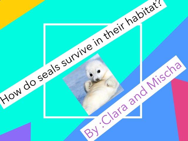 Seals by Jane Miller _ Staff - FuquayVarinaE