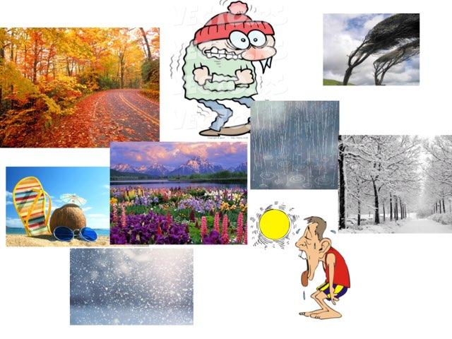 Seasons by Belinda Wu