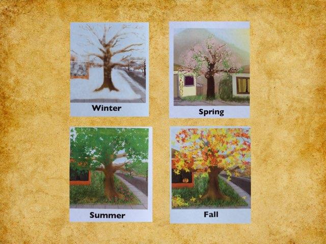 Seasons by Cary Varela