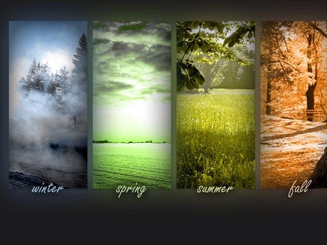Seasons by Logan Plooster