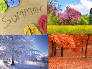 Seasons by Ashley Zheng