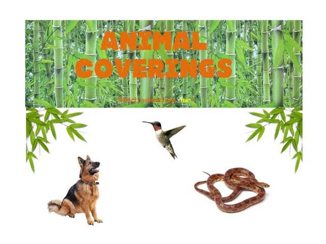 Sf Animal Coverings by D. goodman