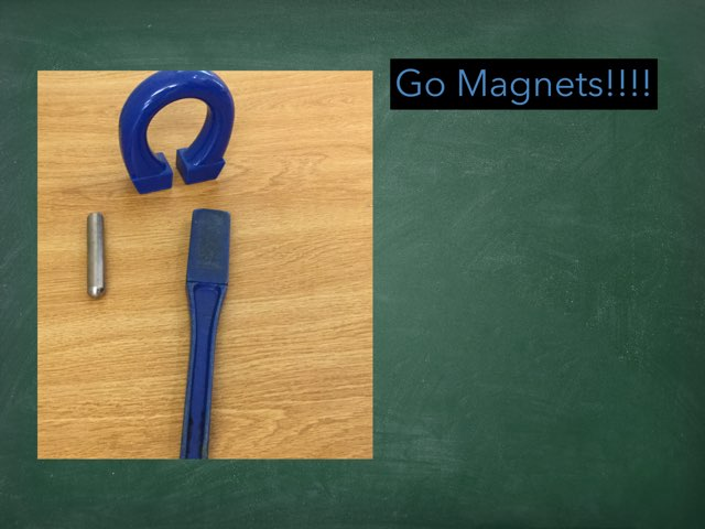 Shaans Magnet by Frances Chapin