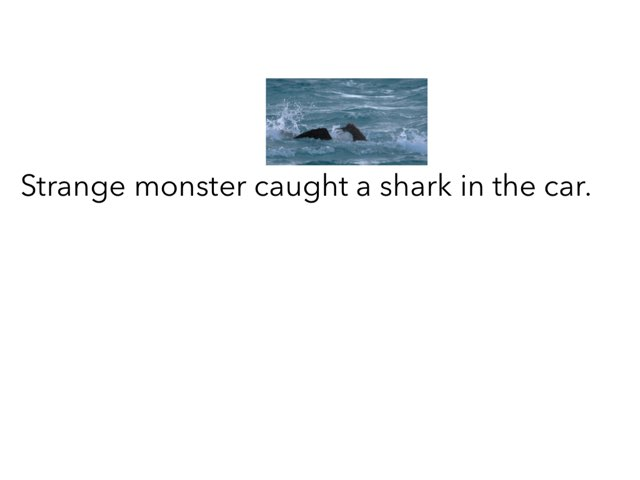 Shark by Khoua Vang