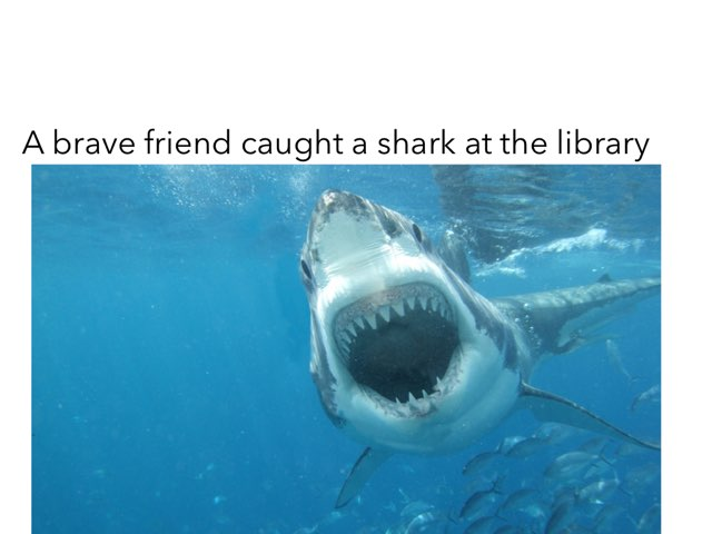 Shark!!!!!!! by Khoua Vang