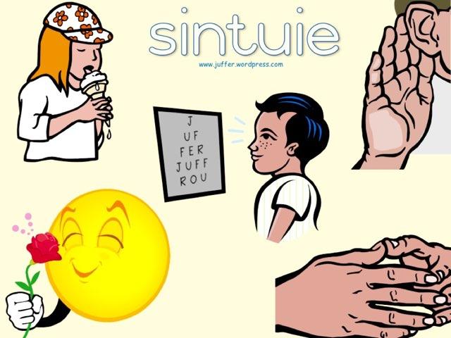 Sintuie by Juffer Juffrou