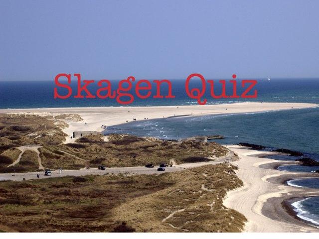 Skagen Quiz  by Johanne Vinther