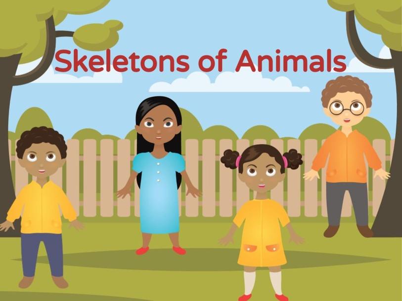 Skeletons of animals  by Miss Dharvena Segeranazan