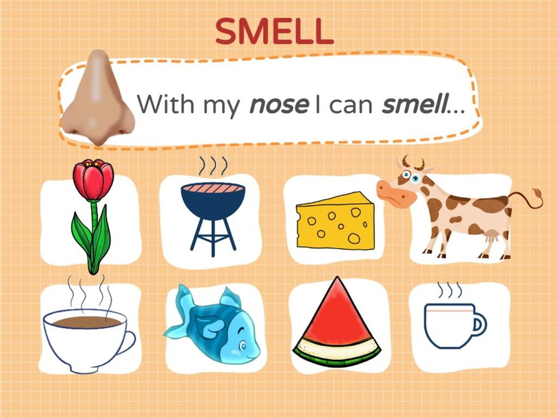 Smell Collage by Kevin Nunez