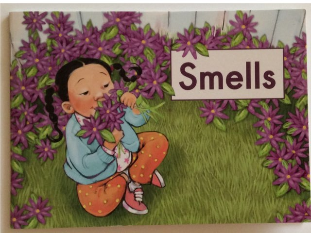 Smells Read Aloud  HCPSS  LLI Green Book 14 Level A  by Chanel Sanchez