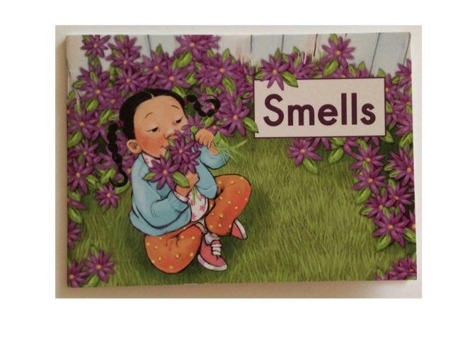 Smells Sentences LLI Green Book 14 HCPSS  by Chanel Sanchez
