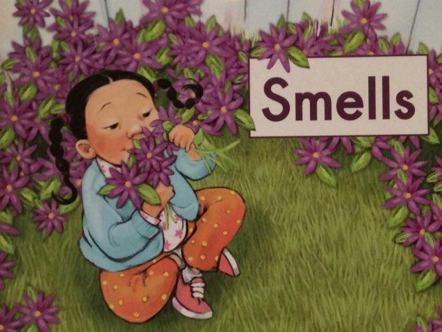 Smells Vocab HCPSS  LLI Green Book 14  by Chanel Sanchez