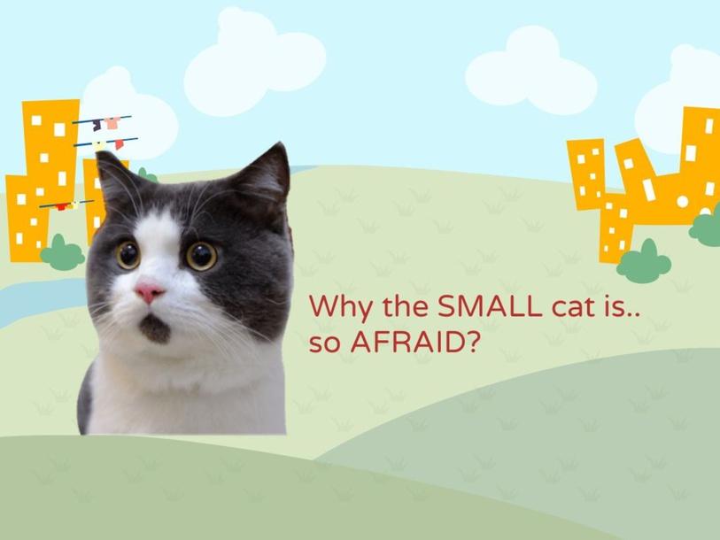 Social Thinking: Why the Cat is So Afraid? by SLP NURAFINIHAMZAH