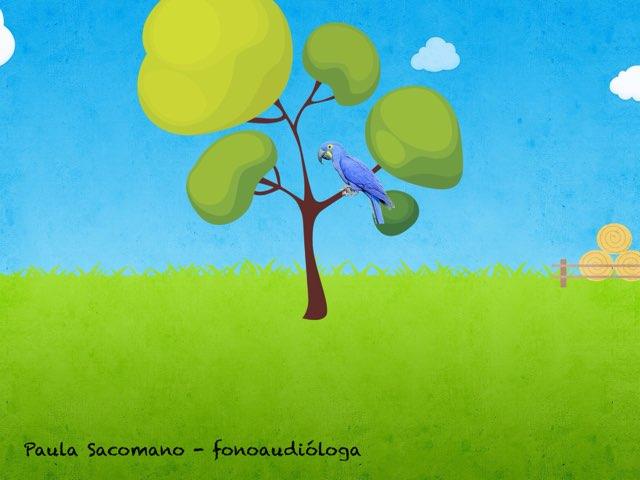 Som /r/ by Paula  Sacomano