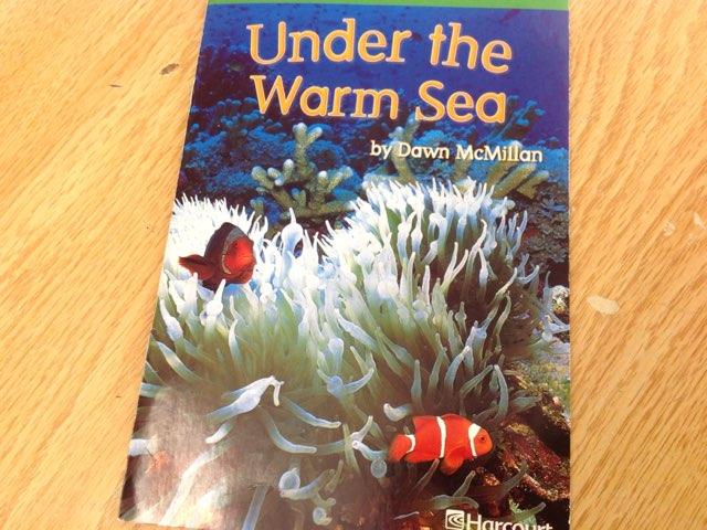 Sophia Under The Warm Sea by Kinderone wolcott