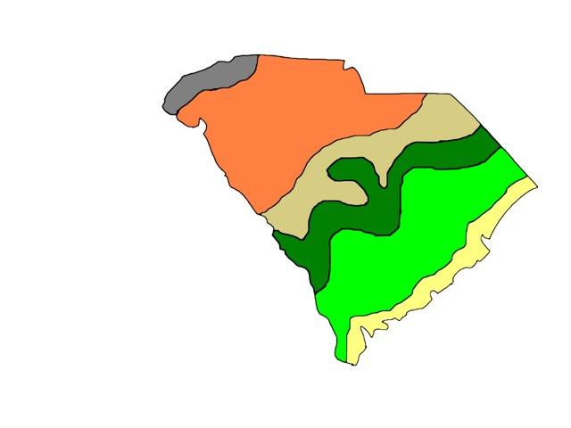 South Carolina Regions  by Miranda Warnock