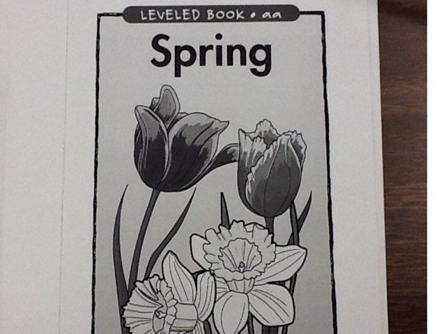 Spring by Sarah Severance