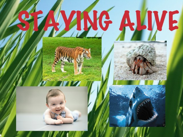Staying Alive by Helen Smith