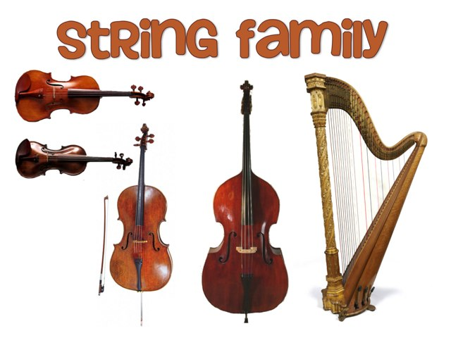 String Family by Jennifer Wentworth