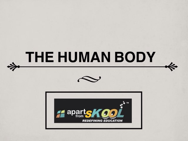 THE HUMAN BODY by TinyTap creator
