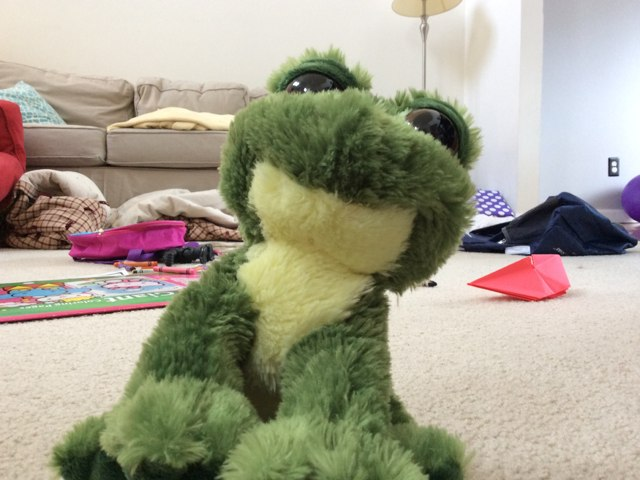 THIS IS RIBBIT. by Scott Shirley