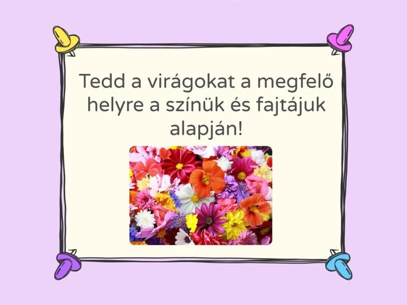 Tavaszi mátrix by Ambrusz Linda